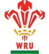 Wales shirt